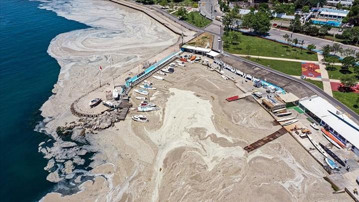 Marmara Denizi'ni deniz salyalarından kurtarmak için 22 maddelik 'Eylem planı'
