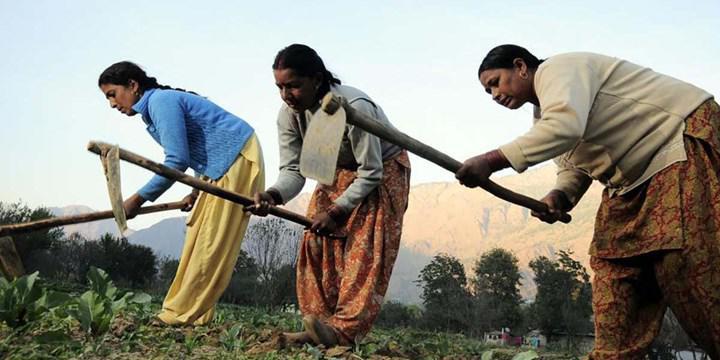 Kadınlar iklim değişikliğinin getirdiği sorunlardan daha çok etkileniyor