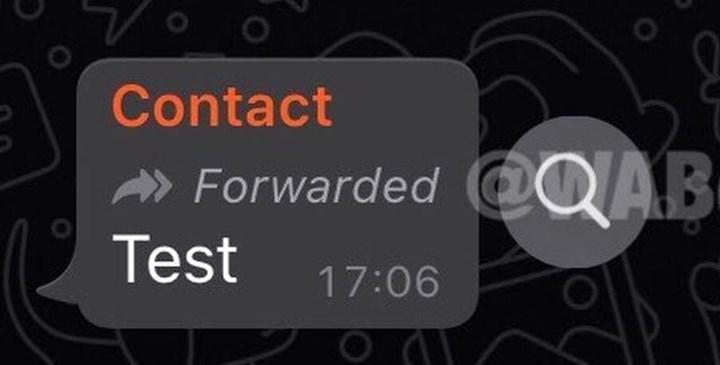 WhatsApp 'mesajı ilet' özelliğine sınırlama getirdi