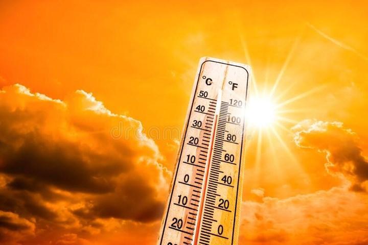 Sıcak hava dalgası 1 milyar canlının ölümüne yol açtı
