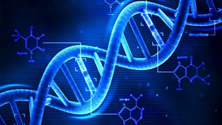 mRNA aşılarının DNA'daki etkileri