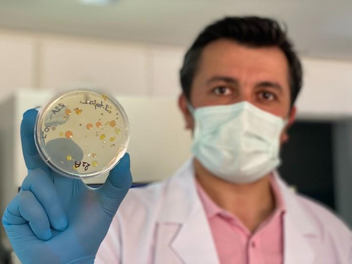 Araştırmacılar 6 ülkeden 60 farklı bakteri buldular