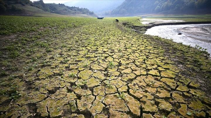 Türkiye'de kuraklık tehlikesi büyüyor