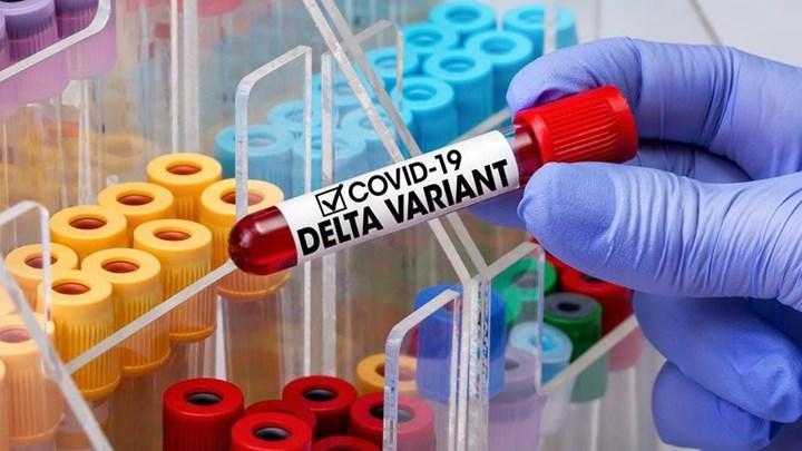Delta varyantındaki virüs yoğunluğu %1200 kat arttığı açıklandı