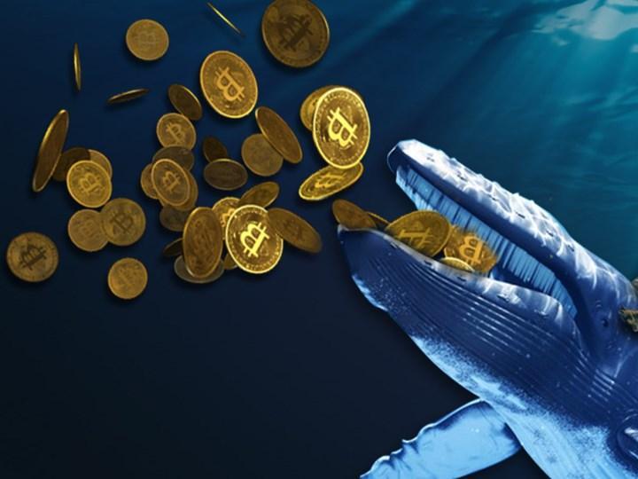 Kripto para balinaları son 6 haftada 170 bin Bitcoin satın aldı