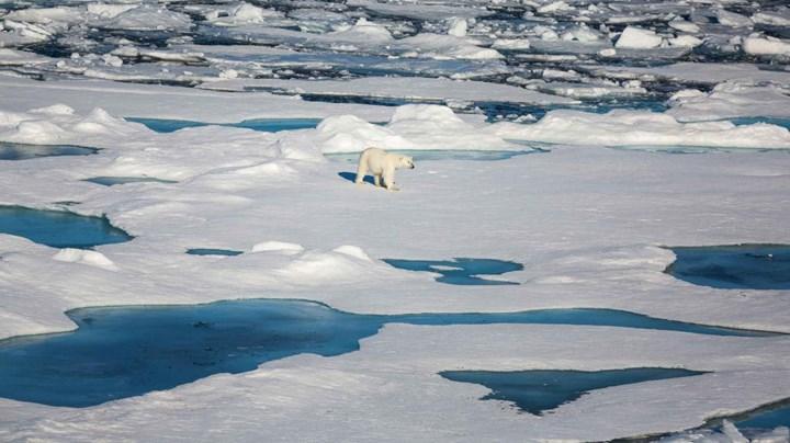 Yapay zekâ, kutuplardaki deniz buzu erimesini tahmin edebilecek