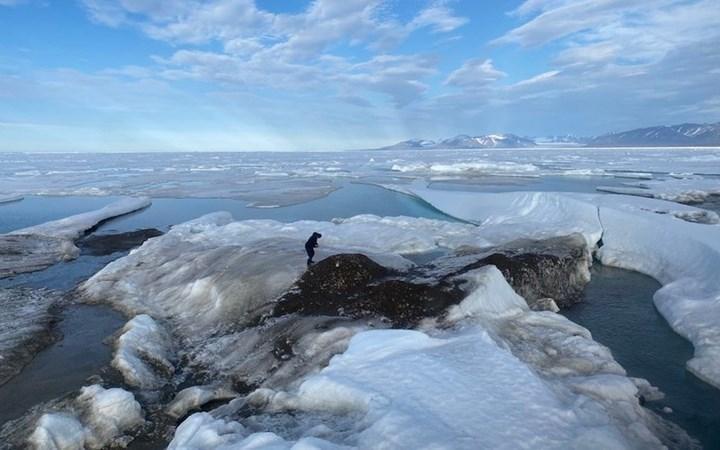 Araştırmacılar dünyanın en kuzeyindeki adayı keşfetti