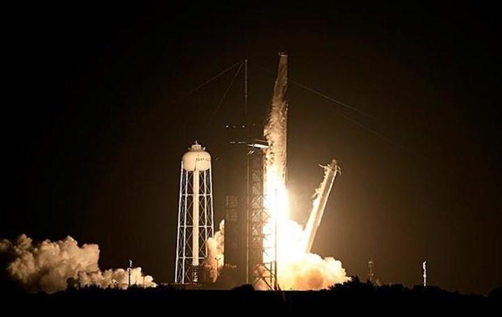 SpaceX, uzaya karınca, avokado ve dondurma gönderdi