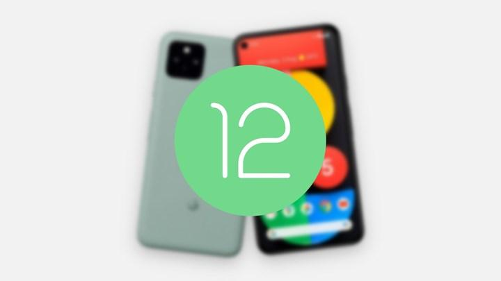 Android 12'nin kararlı sürümünün çıkışı ertelendi