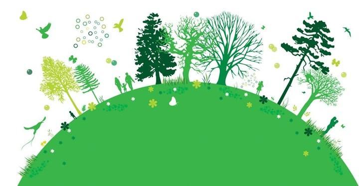 Daha sürdürülebilir bir üretim için 'Yeşil Dönüşüm'