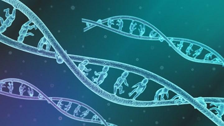 Türk toplumunun genetik yapısı incelendi