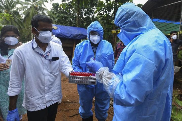 Sağlık çalışanları kan örnekleri topluyor
