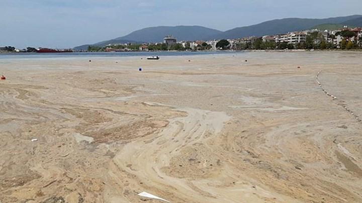 Marmara Denizi'nde başka çevresel felaketler de yaşanacak