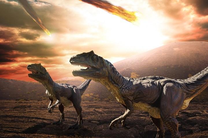 Dinozorlara çarpan asteroit, modern yılanların oluşmasını sağladı