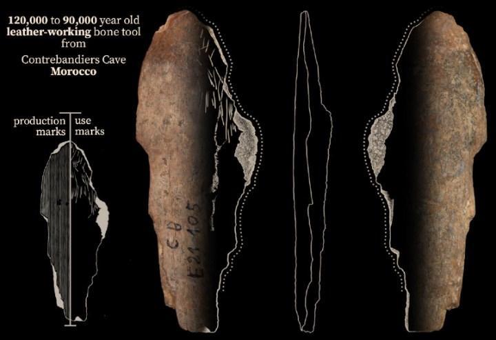120.000 yıl önce insanların kıyafet imalatı yaptığı ortaya çıktı