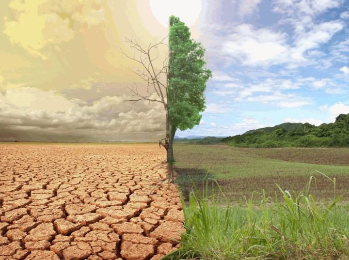 Paris İklim Anlaşması komisyonda kabul edildi