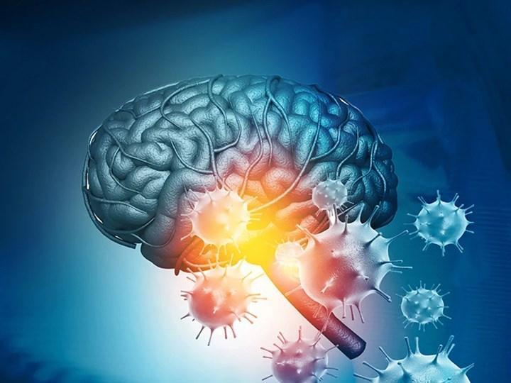 'Covid-19 beyni küçültüyor'