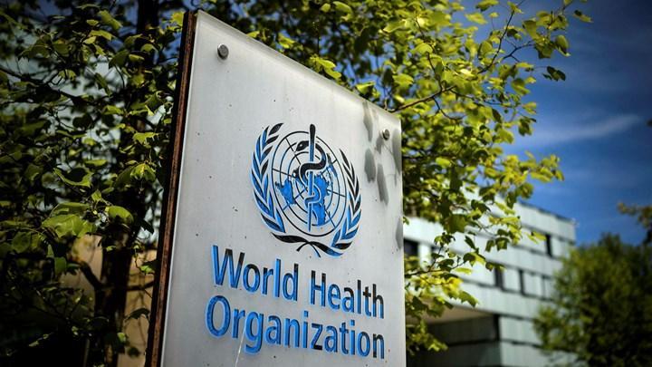 Dünya Sağlık Örgütü, COVID'in kökenini araştırmak için ekip kurdu
