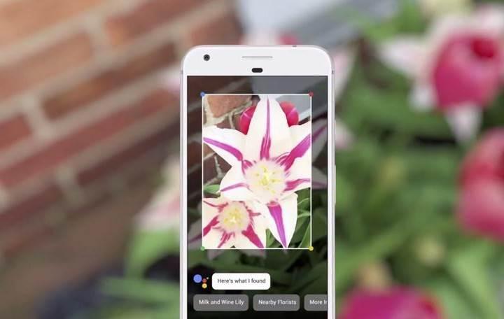 Google Lens artık iOS cihazlarda da kullanılabiliyor